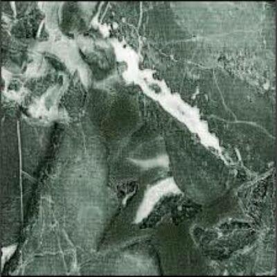 AREZZO  GREEN  - öntapadós fólia, 67,5 cm x 15 m